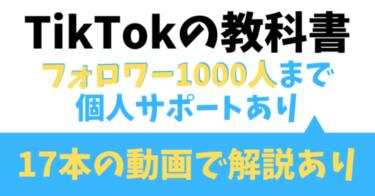 TikTokの教科書【フォロワー1,000人まで個人サポートつき】