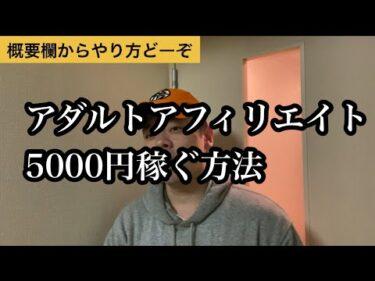 アダ系アフィリエイト5000円までのプロセス